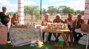 Cooperativa de mujeres. Brasil